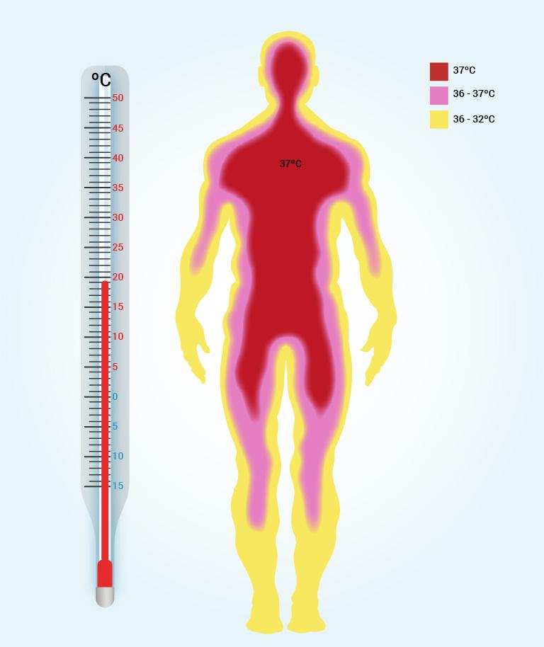 for lav temperatur i kroppen